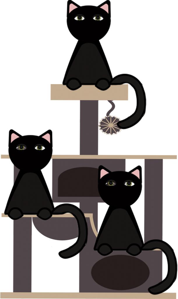 Krabpaal voor grote katten