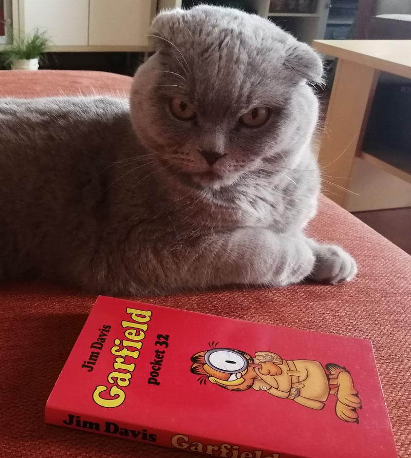 Garfield is vakliteratuur