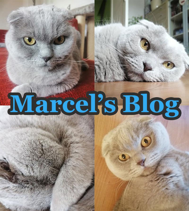 Marcel's blog